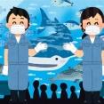 四国水族館、正式オープン延期に 四国在住者限定で営業へ