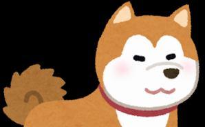 ソファで眠る秋田犬の寝顔がすごいことに