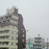 『雪っ!』の画像