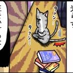 引きこもり猫に喧嘩を売るタビ