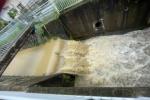 星田の「傍示川」も超増水しててベージュ色の滝みたいになってる〜こないだの大雨の影響で増水〜