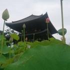 『喜光寺 その2』の画像