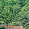 オレンジ電車、緑のなかを Shiotsu