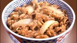 吉野家「福島でコメを自社生産するので、食べて応援してください^^」
