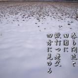 『フォト短歌「春も間近」』の画像