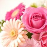 『咲美堂漢方薬房はお陰様で5周年を迎えることができました』の画像