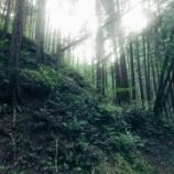 『「松郷峠(ときがわ町側)」~インターバルトレーニングにも最適な短くてもピリリな峠~』の画像