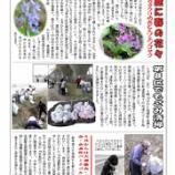 『町会広報紙「各部だより」発行』の画像