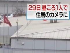 親日トルコさん「日本さん、カルロス・ゴーンまじ終わらせますから!」⇒ 衝撃の展開wwwww
