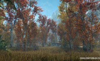 Realistic Aspen Trees SE