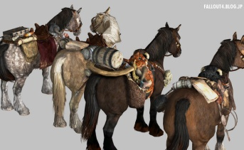 More Saddles SSE