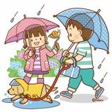 『【クリップアート】雨の中傘をさして犬の散歩をする子どもたちのイラスト』の画像