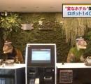 「変なホテル」関東初進出、ロボット140台が接客