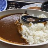 『くら寿司の酢飯カレー食いにきたったww』の画像