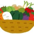 野菜を使った常備菜教えてクレメンス