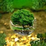 『バイオレメディエーション:環境を浄化する生物たち』の画像