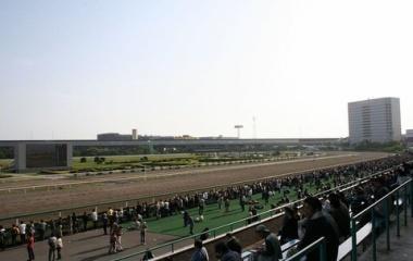 『日本テレビ盃2021 予想見解(9/29船橋競馬)』の画像