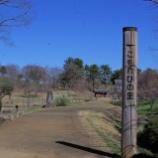 『3月の国営昭和記念公園Ⅱ;立川市』の画像