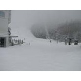 『まだまだ降り続く雪!』の画像