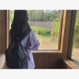『【乃木坂46】佐々木琴子の完全プライベート動物園デート写真が公開される!!!!』の画像