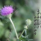 『あざみの歌』の画像