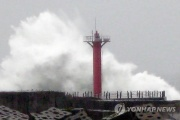 【韓国】「台風の威力」(写真)
