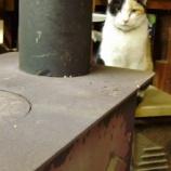 『樽の家具つくり・2』の画像