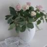母の日のお花とオススメの洋書!グリーンと北欧スタイルの教科書