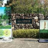 『SAGAメン、牧野植物園に行く🌿』の画像