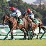 『第813回(回顧)2017年京成杯AH/高速馬場に対応した、末脚を長く使える馬の独壇場』の画像