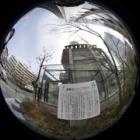 『目黒川の桜② 蛇崩川 2020/03/25』の画像