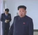 【北朝鮮】スッポン養殖工場、停電で水の供給停止し子スッポン死亡 現地視察の将軍激怒し工場長処刑