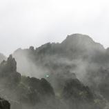 『雨の日のお散歩』の画像