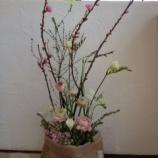 『春を先取り』の画像