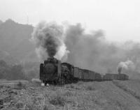 『レイルNo.101は近鉄大阪線と関西本線 そして士別森林鉄道』の画像