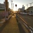 【実況】東京駅から福岡マリンワールド海の中道まで歩く 12日目と13日目
