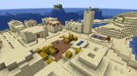 砂漠の村を造る (4)