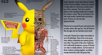 ピカチュウの解剖図wwwwww