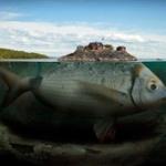 【閲覧注意】絶対深海に超巨大生物いるよな