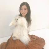 『【乃木坂46】天使か・・・超笑顔の佐々木琴子!猫との戯れショットが公開!!!』の画像