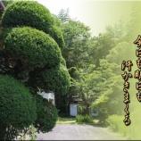 『我家の「庭木剪定」』の画像