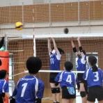 シーガル・バレーボールスクールのblog