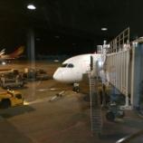 『JAL70便 ホーチミン-羽田 ビジネスクラスの機内食はやっぱりおいしい』の画像