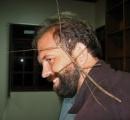 中国のナナフシ、世界最長の昆虫と認定 全長62.4センチ
