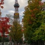 『秋の散歩Walking in autumn』の画像