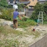 『簡単にできる、一時的な雑草の処理方法とは?』の画像