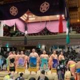 『相撲観戦2』の画像