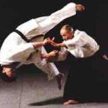 『合気道経験者こそ柔術を始めるべき!』の画像