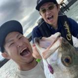 『テーマは「普段の釣りを持ち込む」。今年も鹿児島の釣船まりあでシーバスゲームを楽しんできました♪』の画像