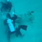 【動画】海上自衛隊、沖縄基地隊の周辺海域での「不発弾処理」の様子がこちら!